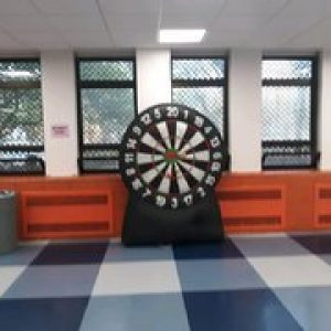 Giant 6 ft Dartboard / baseball throw Game