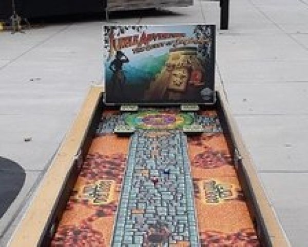 Jungle Shuffleboard Carnival Game